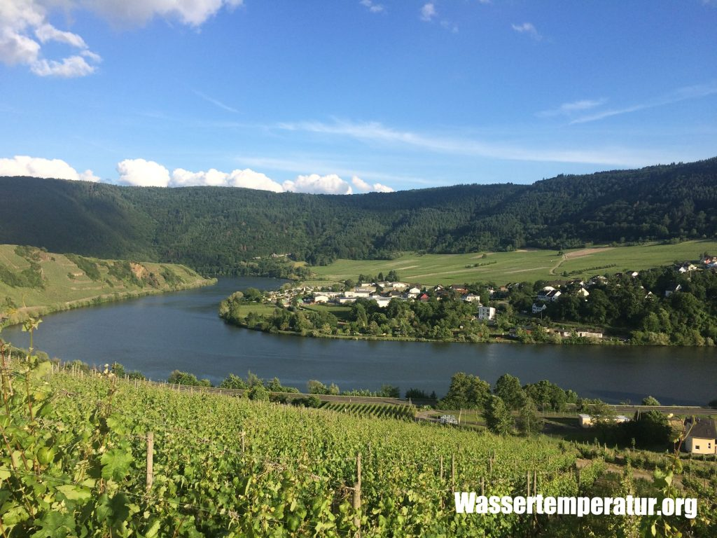 Mosel bei Mehring